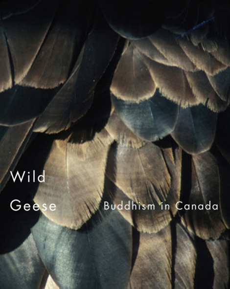 wild_geese